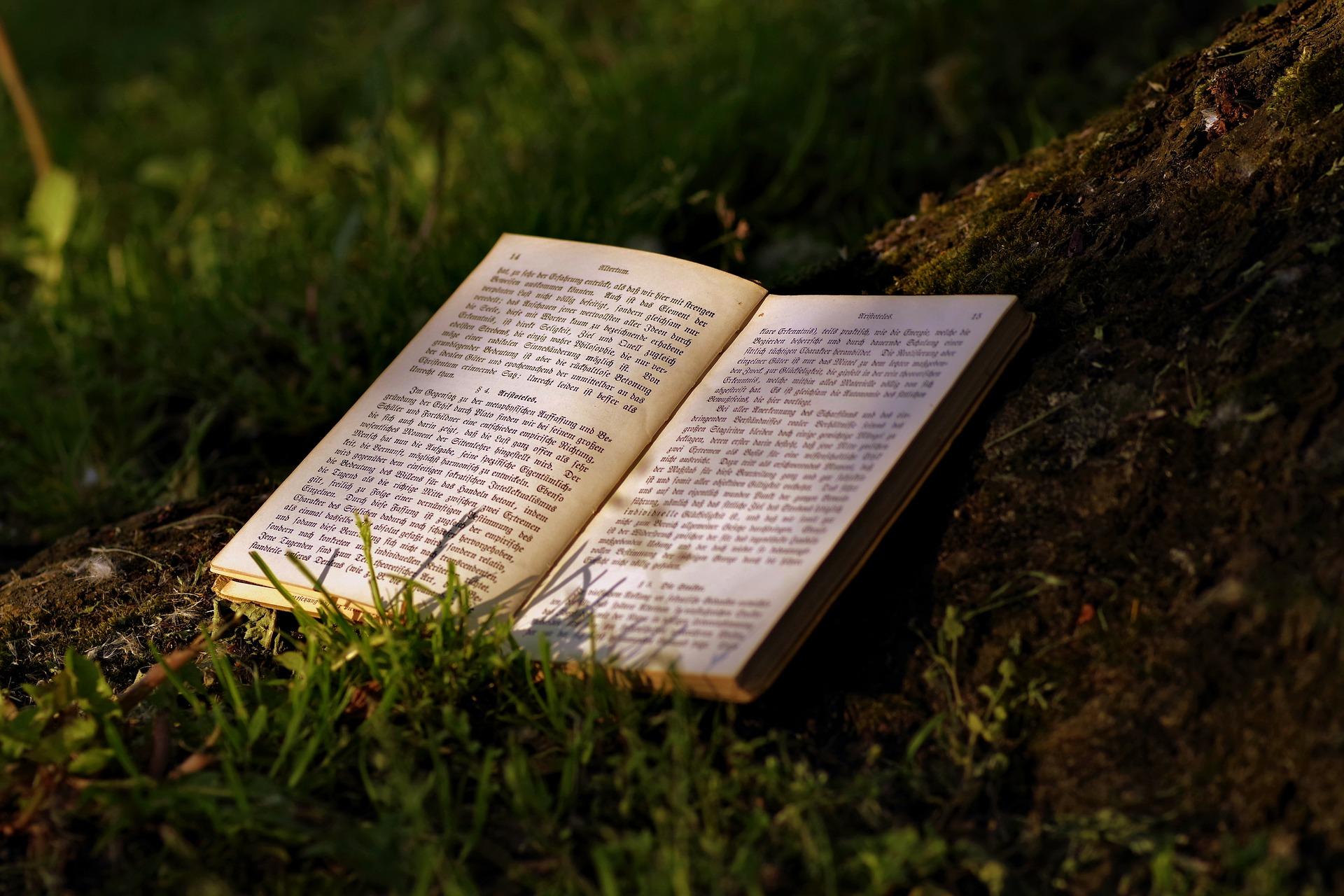 Poletni čas Središča za samostojno učenje
